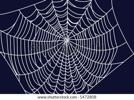 Spiderweb vector illustration - stock vector