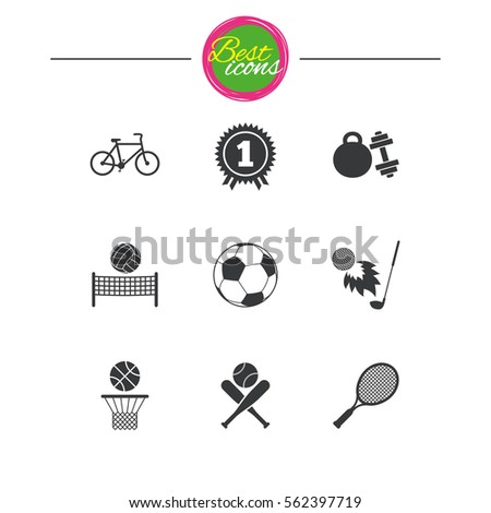 Sport Games Fitness Icons Football Basketball Stock Vector