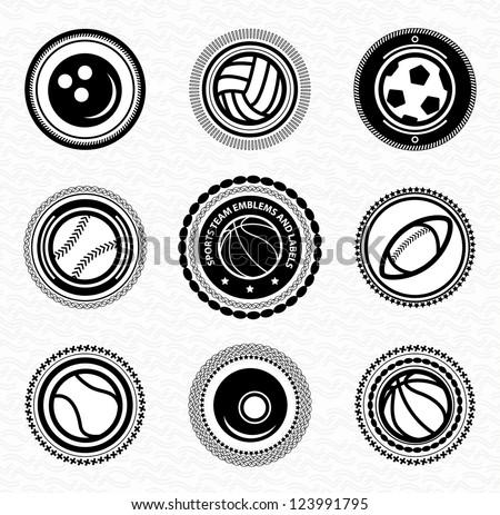 Sports team vintage retro badges and labels - stock vector