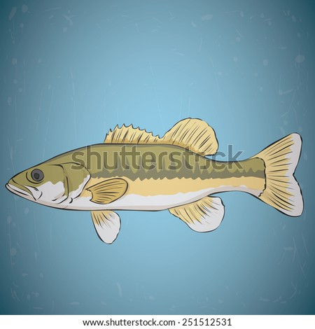 Spotted bass. Hand drawn vector illustration. Water background. - stock vector