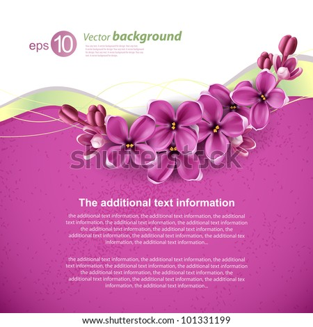 Spring background for the design of flowers. Vector illustration - stock vector