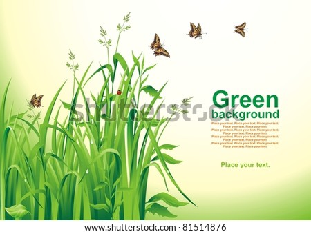 Spring background. Green grass. Vector illustration. - stock vector