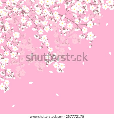 Spring background with blooming tree branches frame - stock vector