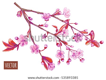 spring blossom bloom branch with pink flowers cherry plum almonds