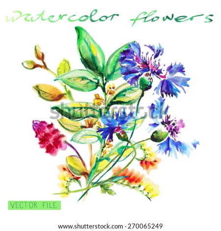 Spring blue flowers isolated on white. Watercolor Vector Flowers. Vector Watercolor Flowers. - stock vector