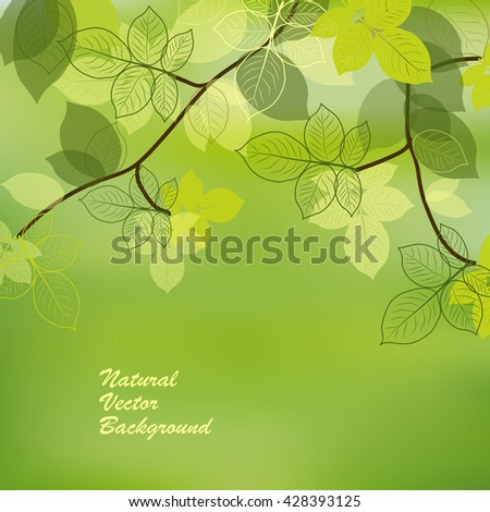 Spring brunch with abstract leaves on green background. Vector illustration. - stock vector