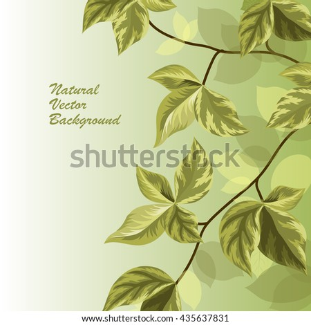 Spring brunch with leaves on green background. Vector illustration. - stock vector