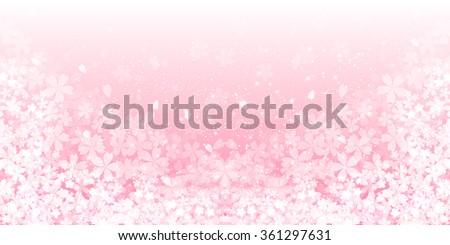 Spring cherry blossom background - stock vector