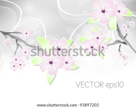 Spring flower background with abstract cherry blossoms against white to light grey color gradient - stock vector