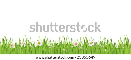 Spring flowers and grass seamless illustration - stock vector