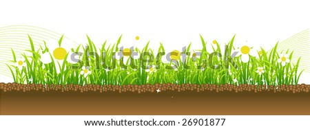 Spring, flowers on the meadow - stock vector