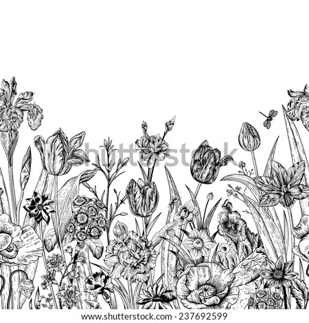 Spring flowers. Seamless floral border. Poppies, iris, tulips, carnations, primroses, daffodils on a white background. Monochrome. Vintage vector illustration. - stock vector