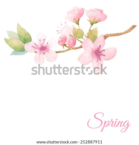 Spring fresh background with elegant blossom tree branch. Vector watercolor. - stock vector
