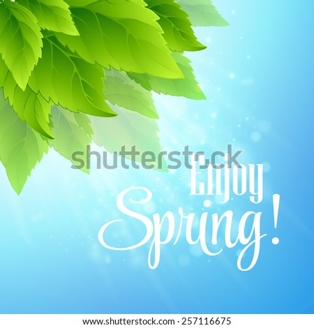Spring fresh green leaves. Vector illustration - stock vector