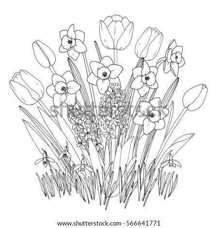 Spring Garden Flowers Coloring Page Hand Drawn Set With Blooming Daffodils Tulips