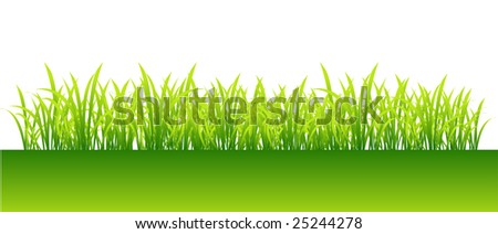 Spring, green grass for your design - stock vector