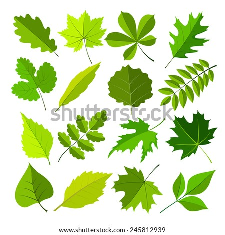 spring leaves flat style set. vector illustration - stock vector