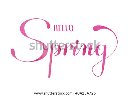 """Spring lettering. Hand drawn text with ornamental elements for lettering poster, invitation or postcard. """"Hello Spring"""" lettering in pink watercolor against white background. Layered , editable design - stock vector"""