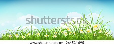 Spring meadow with green grass, daisies and sky, vector illustration - stock vector