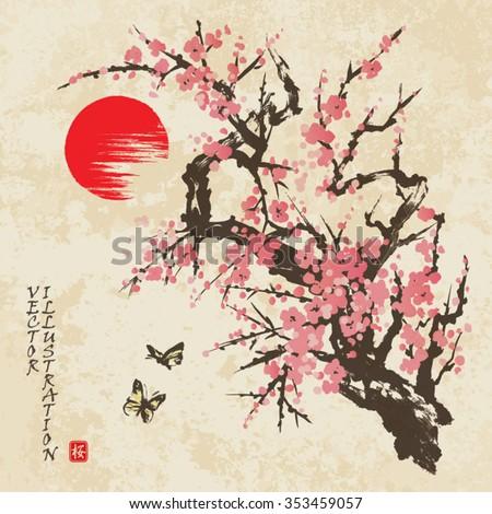 Spring Sakura Cherry Blossom Butterflies Traditional Stock Vector 353459057
