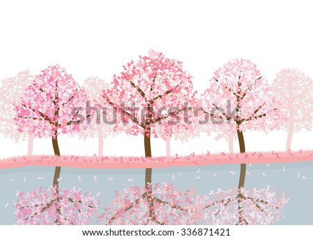 spring season of sakura cherry blossom trees with lake. landscape isolated on white background vector