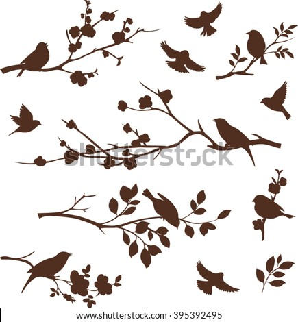 Spring set of bird and floral twig silhouettes.  Blossoming apple and cherry tree branches - stock vector