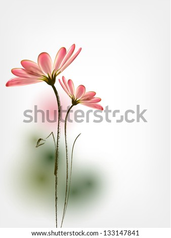 Spring vector flower background Daisy - stock vector