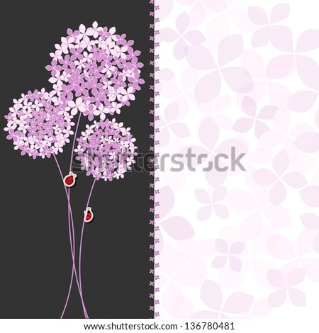 Springtime Purple Pink Hydrangea Flower Greeting Card on Colorful Background - stock vector