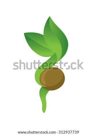 Sprout Grow - stock vector