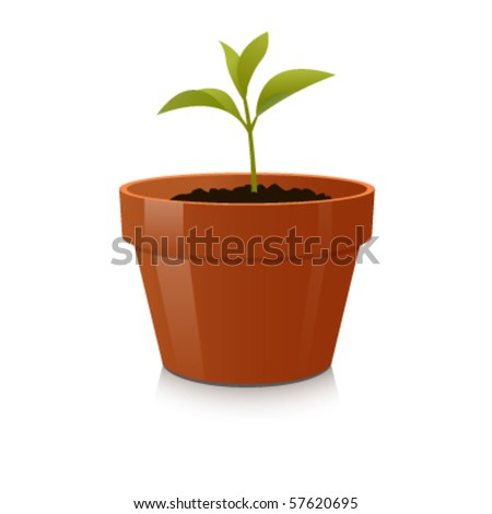 Sprout in Pot. Vector illustration. The concept of growth and be handled with care