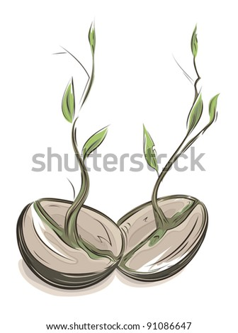 Sprouting hand drawn watercolor style beans illustration. EPS8 layered vector. No effects. - stock vector