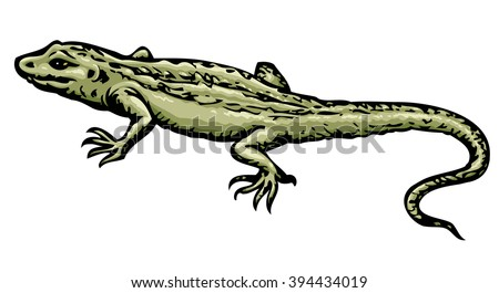 Squamate old reptiles Lacertilia isolated on white background. Freehand color hand drawn picture symbol sketchy in art retro scribble style. Closeup view with space for text on sand