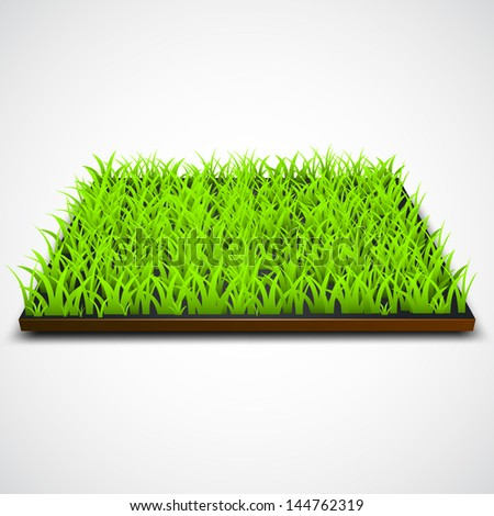 Square of green grass field over white background - stock vector