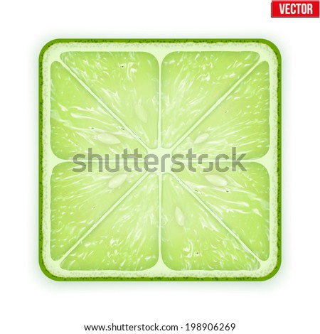 Square slice of lime. Juicy fruit icon. Isolated on white background. Vector Illustration. - stock vector