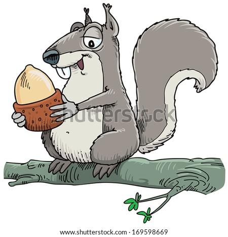 Squirrel holding hazelnut. - stock vector