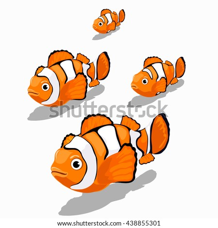 Stages of growth and maturation of clown fish isolated on white background. Vector illustration. - stock vector