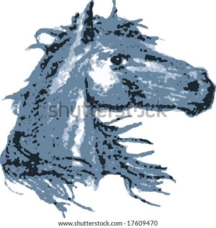 Stallion - stock vector