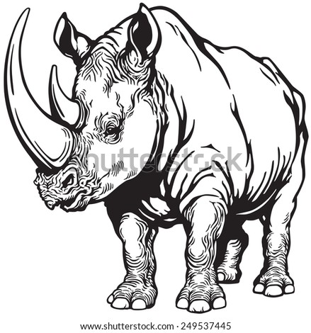 standing rhinoceros or rhino , black and white image