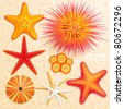 Starfish and  sea urchins collection on sand background. Vector illustration. - stock vector