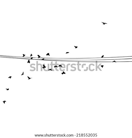 starlings on wires. Vector - stock vector