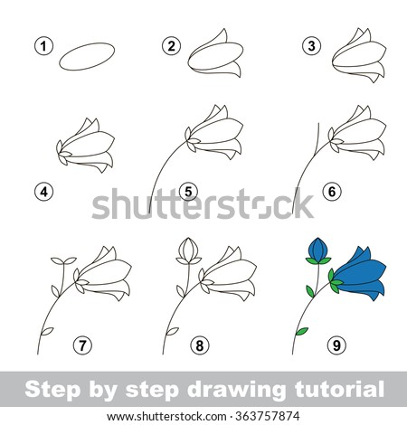 step by step drawing tutorial vector kid game how to draw a bluebell flower