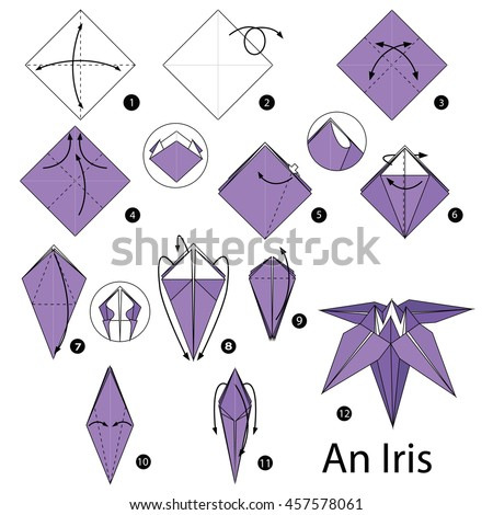 Step by step instructions how make stock vector royalty free step by step instructions how to make origami an iris flower mightylinksfo