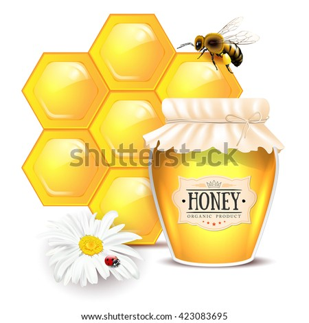 Still life with honey concept. Bee, honeycomb, glass of honey with label, daisy flower with ladybug - isolated on white background. Vector illustration. - stock vector