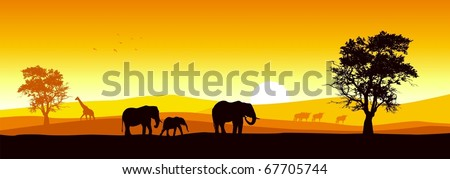 Wildlife Stock Photos wildlife stock vector