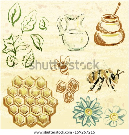 Stock vector set of  natural medicine and honey treatment illustration