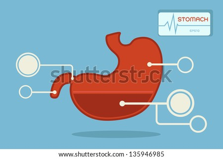 stomach  infographic vector - stock vector