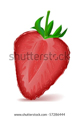 Strawberry Segment - stock vector