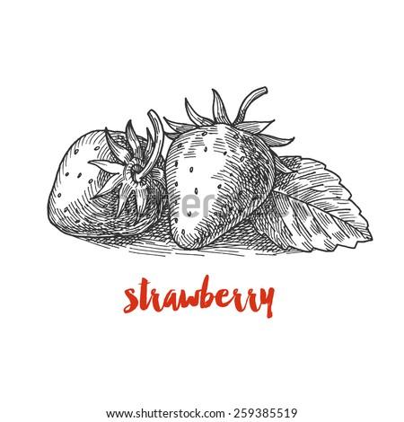 strawberry, vintage berries - stock vector