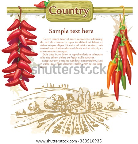 Strings of red peppers  - stock vector