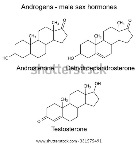 Structural chemical formulas of male sex hormones - androsterone, dehydroepiandrosterone, testosterone, 2d Illustration, vector, eps 8 - stock vector